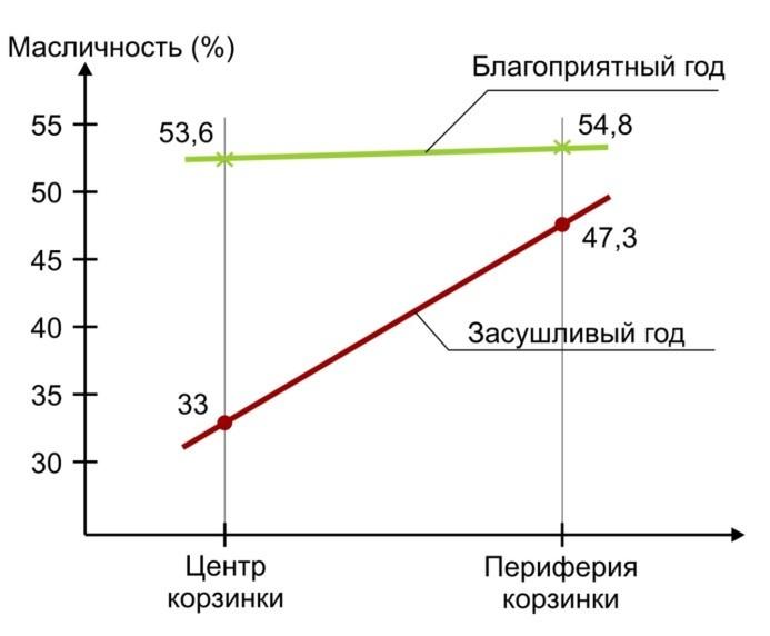 Сравнение масличности в семенах подсолнечника (Фурсова А.К., 1984 г.).