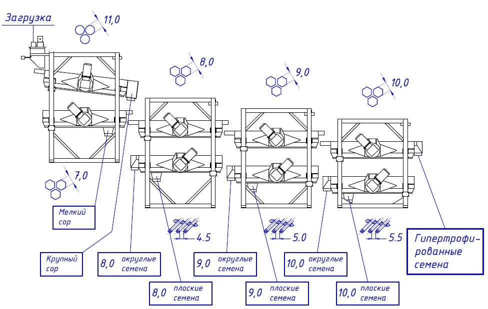 Схема компоновки линии по очистке и калибровки семян кукурузы и подсолнечника
