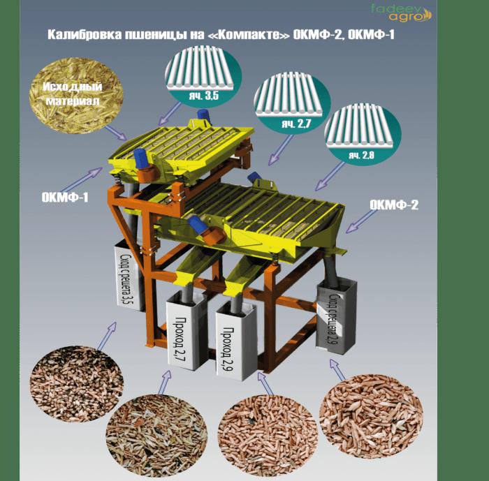 определения необходимых решет для очистки зерна пшеницы от Эгилопса.