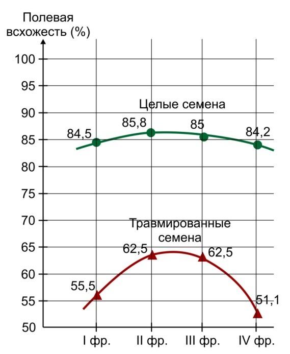 Полевая всхожесть целых и травмированных семян кукурузы (гибрид) ВИР-25