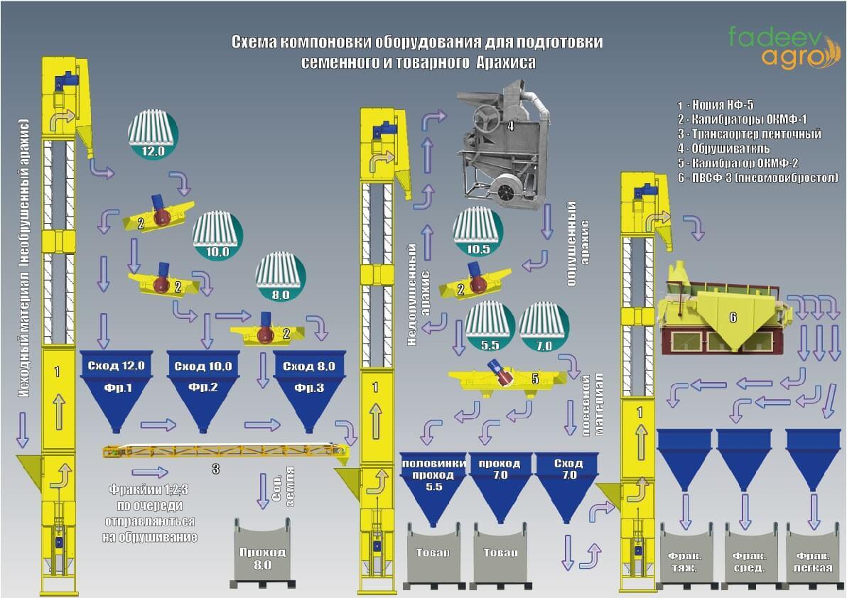 Схема компоновки зерно очищающего оборудования для подготовки семенного и товарного арахиса
