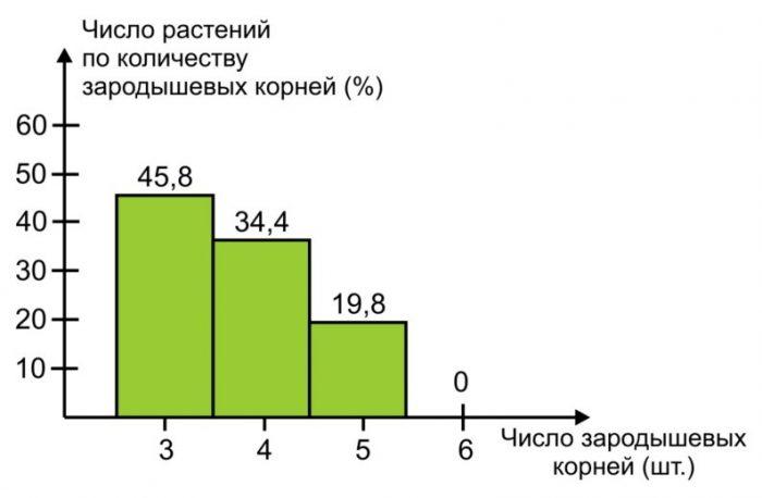 Рис. 9. Число растений (%) по количеству зародышевых корней у мелких семян пшеницы (масса 1000 шт. – 22 г.)[7].