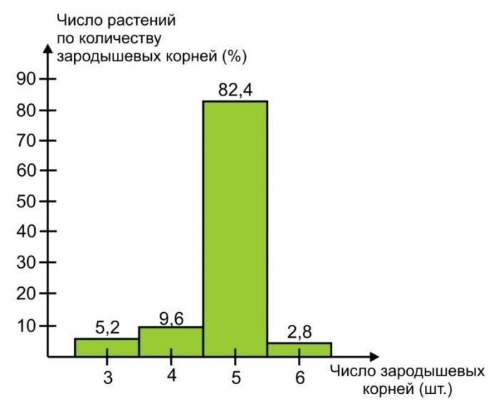 Рис. 10. Число растений (%) по количеству зародышевых корней у крупных семян пшеницы (масса 1000 шт. – 43,3 г.) [7].