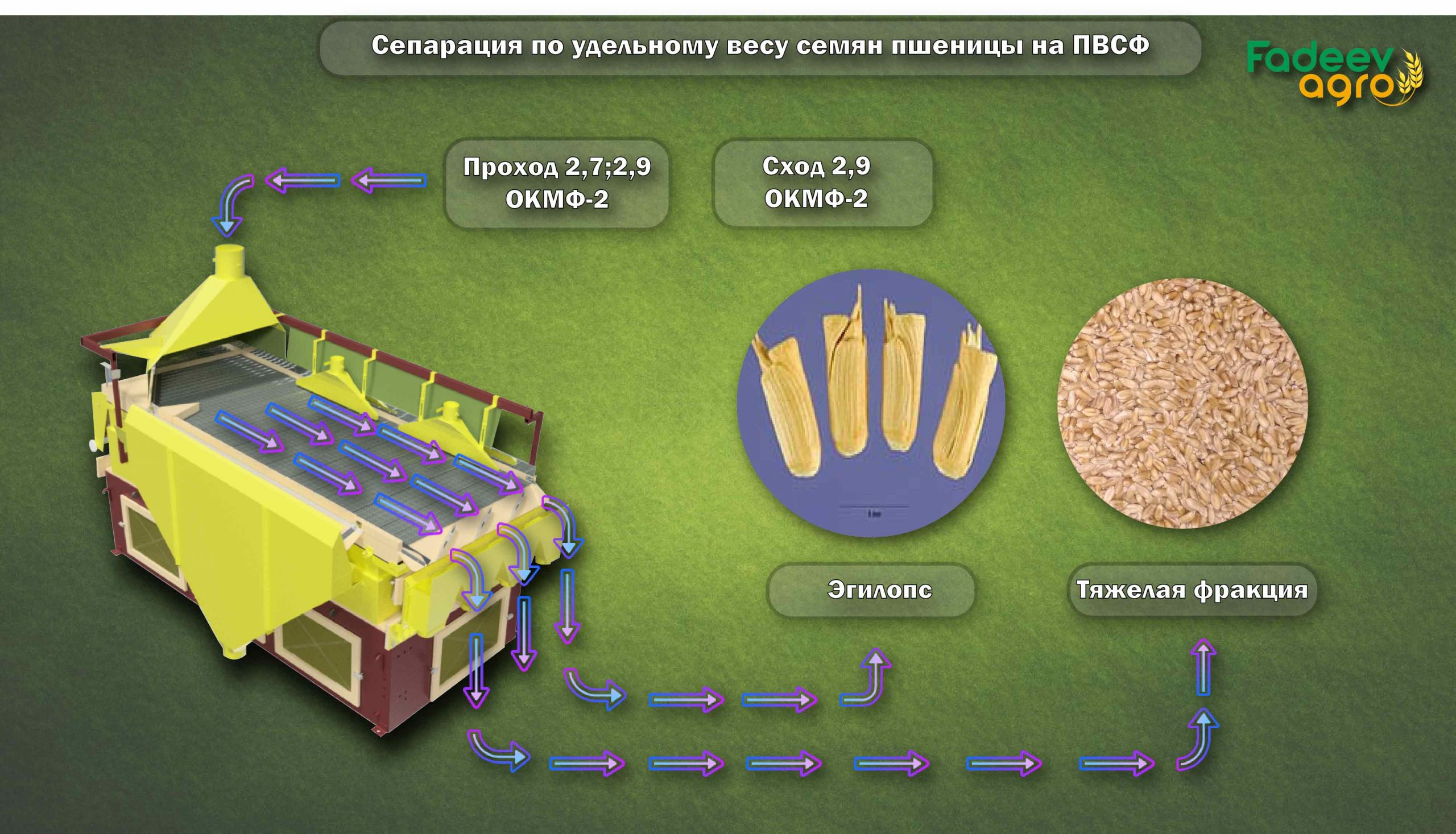 Сепарация по удельном весу Пшеницы