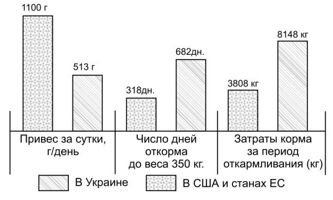 Эффективность откорма крупного рогатого скота в США и странах ЕС по сравнению с эффективностью откорма в Украине