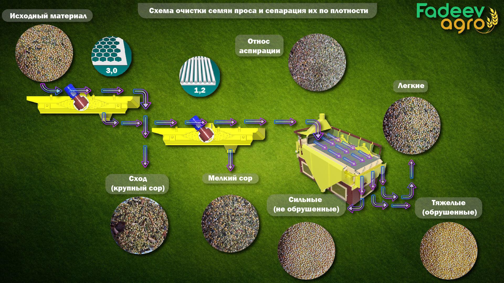 Схема очистки семян проса и сепарация их по плотности